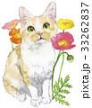 猫 ポピー 水彩のイラスト 33262837