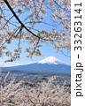富士山と満開の桜 33263141
