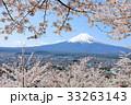 富士山と満開の桜 33263143