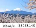 富士山と春の桜たち 33263145