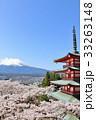 春の青空に恵まれた桜と五重塔 そして富士山 33263148