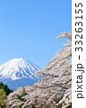 富士山と桜 33263155