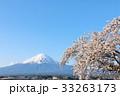 春の暖かい桜の風景と富士山 33263173