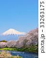 春の青空と桜並木の風景 そして富士山 33263175