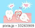 解剖学 マンガ 歯のイラスト 33263909
