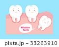 解剖学 マンガ 歯のイラスト 33263910