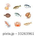 魚介類 33263961