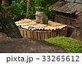 小川寺 臨済宗円覚寺派 井戸の写真 33265612