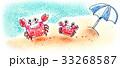 カニ 親子 海のイラスト 33268587