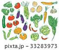 いろいろ野菜 33283973