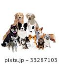 犬 干支 ペットのイラスト 33287103