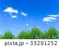 新緑と青空 33291252