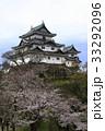 和歌山城 天守閣 桜の写真 33292096