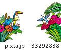 南国 トロピカル 花のイラスト 33292838