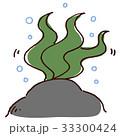 揺らめく海藻 33300424