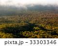 初秋の原生林と雲海1 33303346