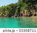 辰の島 無人島 島の写真 33308711