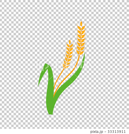 Agriculture wheat logo template 33313911