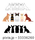 犬 チワワ グループのイラスト 33336260