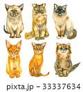 動物 ねこ ネコのイラスト 33337634