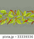 胡椒 スパイス 葉のイラスト 33339336