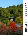 京都 永観堂の紅葉 33339634