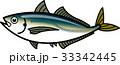 アジ 魚 ベクターのイラスト 33342445
