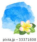 花 プリメリア プルメリアのイラスト 33371608