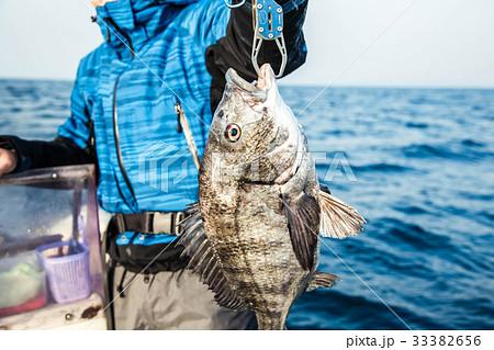 チヌ釣り 33382656
