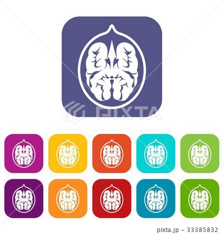 Walnut Icons Set Flatのイラスト素材 33385832 Pixta
