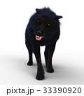 オオカミ 33390920