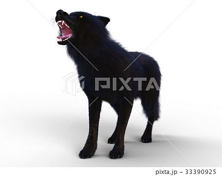 オオカミ 33390925