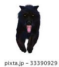 狼 イヌ科 動物のイラスト 33390929