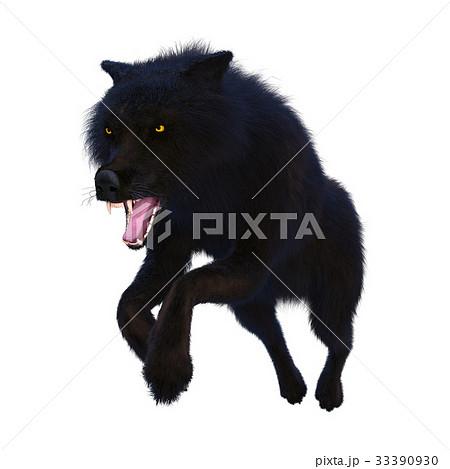 オオカミ 33390930