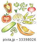 野菜 ベクトル ベジタブルのイラスト 33398026