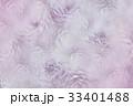 花 菊科 キクの写真 33401488
