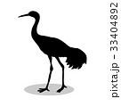 Shadoof bird black silhouette animal 33404892