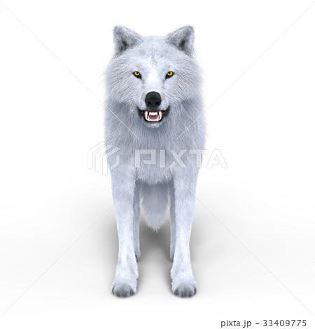 オオカミ 33409775