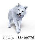 狼 イヌ科 動物のイラスト 33409776