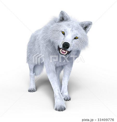オオカミ 33409776