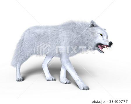 オオカミ 33409777