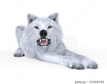 オオカミ 33409783