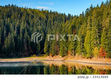 coniferous forest with hazy lake in mountains 33414689