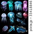 Underwater Animals Icon Set 33418846