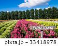 北海道 富良野 満開の写真 33418978