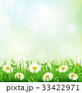 背景 花 カモミールのイラスト 33422971