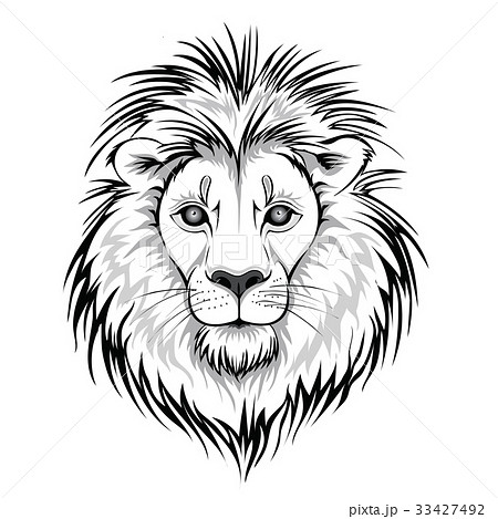 Lion head logo. Vector illustration, isolated on 33427492