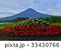 20170825河口湖大石公園からの富士山 33430766