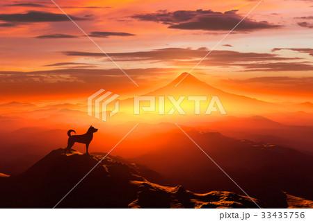 富士山の日の出と犬のシルエット 33435756