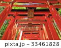 京都・伏見稲荷大社 33461828